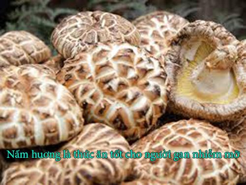 Nấm hương - Món ăn tốt cho người mắc bệnh gan nhiễm mỡ