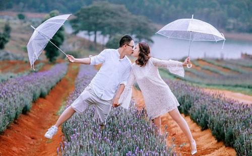 Cánh đồng hoa Lavender đẹp ngây ngất tại Đà Lạt