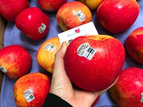 Bảo vệ thận khỏe nhờ ăn táo